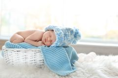 Adorable newborn baby lying in basket stock image