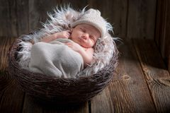 Adorable newborn baby sleeping in the basket with blanket. On old wooden table Royalty Free Stock Image
