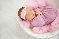 Adorable newborn girl lying in baby nest stock photography