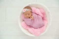 Adorable newborn girl lying in baby nest royalty free stock images