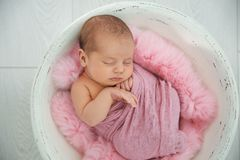 Adorable newborn girl lying in baby nest on light background royalty free stock photo