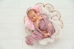 Adorable newborn girl lying in baby nest on light background stock photography