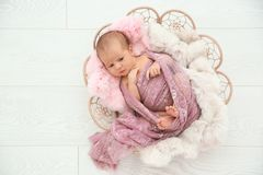 Adorable newborn girl lying in baby nest on light background stock photo