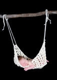 Adorable newborn suspended in hammock. Sweet newborn suspended in hammock. Isolated on black royalty free stock image