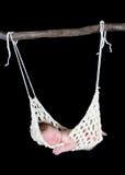 Adorable newborn suspended in hammock. Sweet newborn suspended in hammock. Isolated on black Royalty Free Stock Image