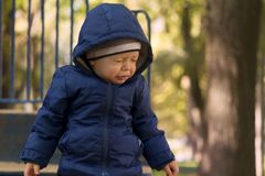 Adorable one year toddler playing in the autumn park on the children playground royalty free stock photo