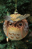 Adorable owl glass ornament Stock Photo