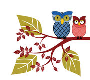 Adorable owls on a branch Stock Images