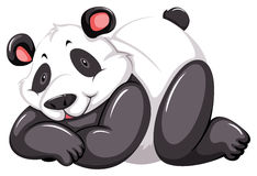 Adorable panda Stock Image