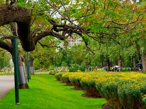 Adorable,peaceful scenery of Fitzroy Gardens in Melbourne royalty free stock photo