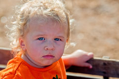 Adorable portrait of little toddler girl in pumpkin shirt riding Stock Photography