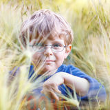 Adorable preschooler kid boy with glasses in wheat field Stock Image