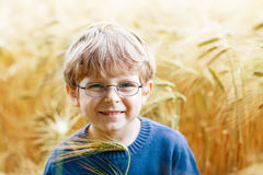 Adorable preschooler kid boy with glasses in wheat field Royalty Free Stock Image