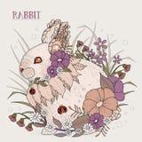 Adorable rabbit Stock Image