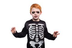 Adorable red hair boy disguised in halloween. Studio portrait isolated over white background Stock Photography