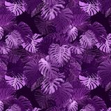 Adorable seamless design pattern with tropical leaves royalty free stock image