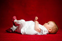 Adorable seven months old newborn cuttie. Sitting on her back over a red background holding his feet and hands in the air Royalty Free Stock Photos