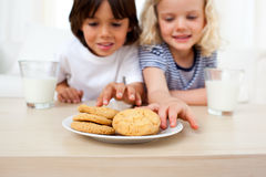 Adorable siblings eating biscuits Royalty Free Stock Photos