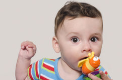 Adorable six month old child chewing a toy. Baby teething. Stock Photo