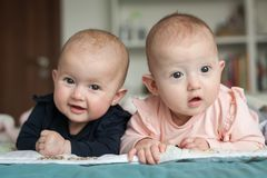 Adorable six months old baby twins in bed at home. Cute kids during tummy time. Two baby twins on bed stock image