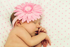 Adorable sleeping newborn baby girl Stock Image