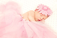 Adorable sleeping newborn baby girl Royalty Free Stock Images
