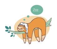 Adorable sloth sleeping on branch. Lazy wild jungle animal taking nap or dozing on rainforest tree. Funny cartoon. Character isolated on white background stock illustration