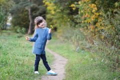 Adorable small girl in the autumn forest Stock Image