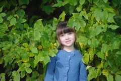 Adorable small girl in the autumn forest Stock Images