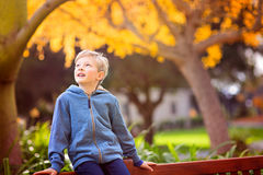Adorable smiling boy Royalty Free Stock Image