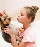 Adorable smiling happy little girl child playing with puppy yorkshire terrier. At home stock photography