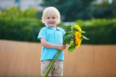 Little boy with bunch of sunflowers outdoors Stock Images