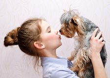 Adorable smiling little girl childl holding and playing with puppy yorkshire terrier stock photography