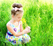 Adorable smiling little girl on the meadow smelling the flowers Stock Photos