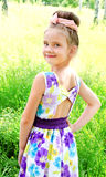 Adorable smiling little girl on the meadow in summer day Stock Photos