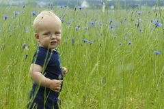 Adorable smiling toddler in high summer grass. Copy space.  stock photography
