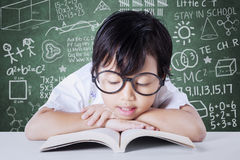 Adorable student enjoy reading book Royalty Free Stock Photo
