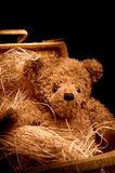 Adorable teddybear in basket. Shot with light painting technique Stock Images
