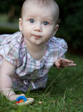 Adorable toddle on a lawn in a park. Close-up portrait of an adorable toddler sitting on a lawn in a park Stock Images