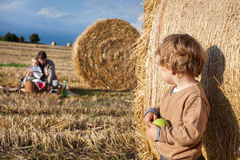 Adorable toddler with apple on golden field Stock Image
