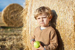 Adorable toddler with apple on golden field Royalty Free Stock Photos