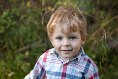 Adorable toddler in autumn forest Royalty Free Stock Image