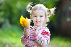 Adorable toddler in an autumn park Stock Photos