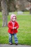Adorable toddler in an autumn park Stock Image