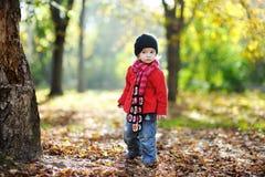 Adorable toddler in an autumn park stock photography