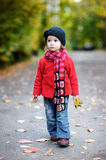 Adorable toddler in an autumn park Royalty Free Stock Photos