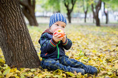 Adorable toddler boy  eating fresh red apple Stock Image