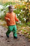 Adorable toddler boy at fall Stock Photography