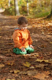 Adorable toddler boy at fall Royalty Free Stock Photo