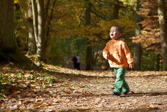 Adorable toddler boy at fall Royalty Free Stock Images